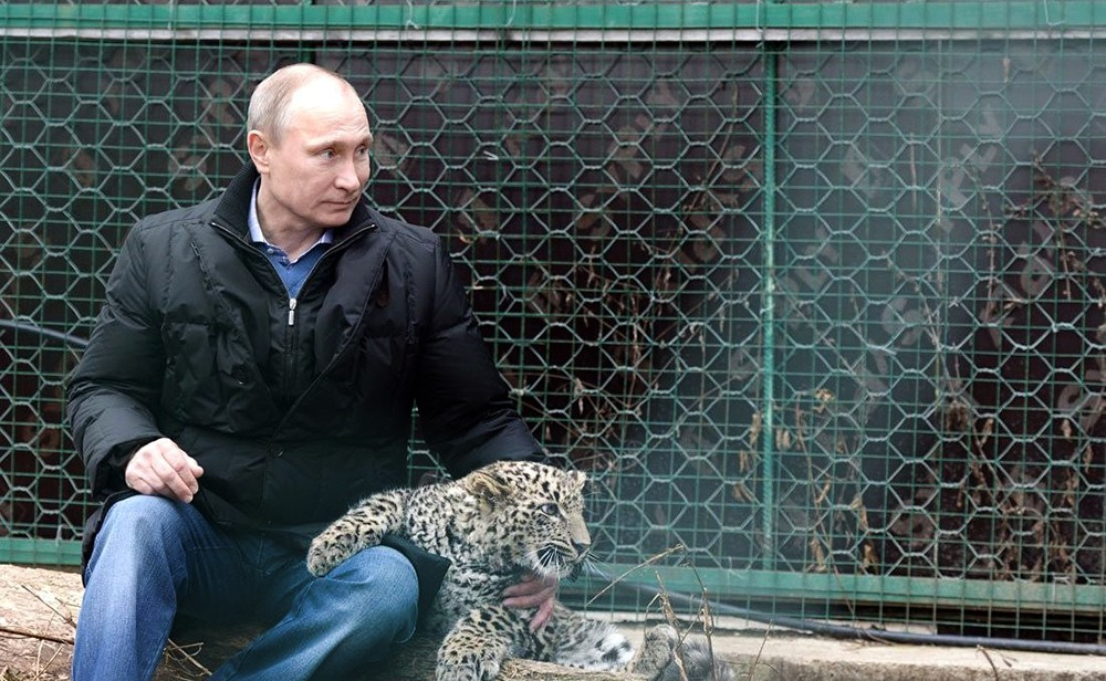 Владимир Путин в центре разведения и реабилитации переднеазиатского леопарда