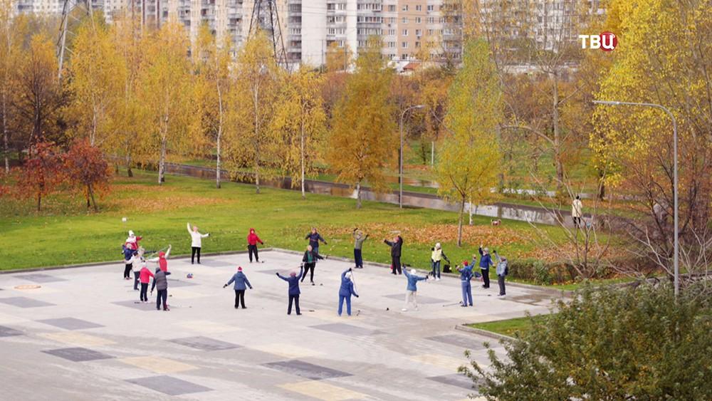 Пенсионеры делают гимнастику в парке
