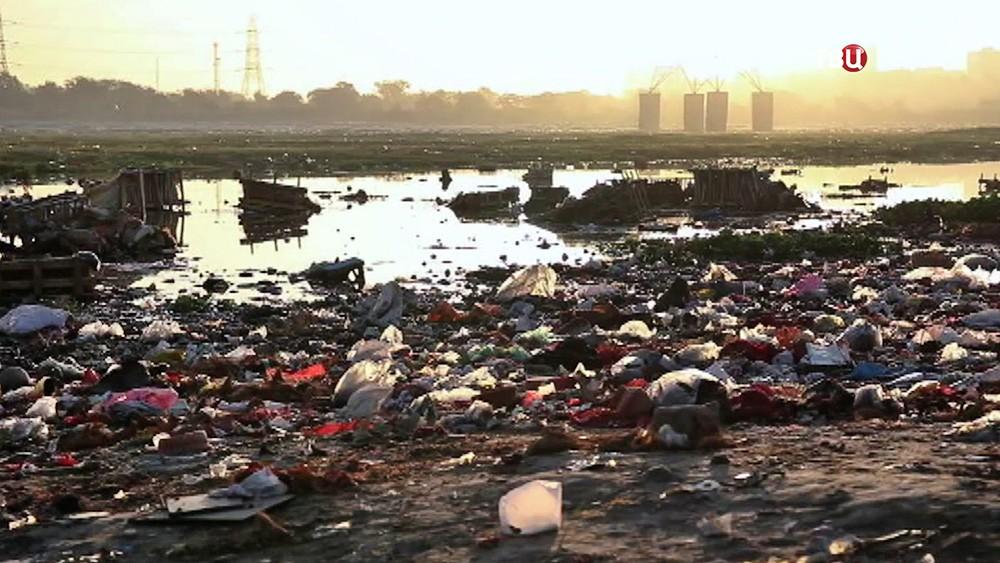 Отзагрязнения природы погибает  больше людей, чем ввойнах икатастрофах