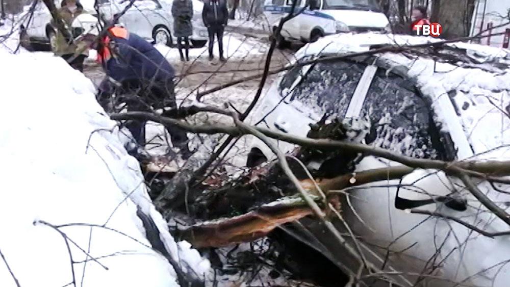 Спасатели МЧС распиливают упавшее дерево