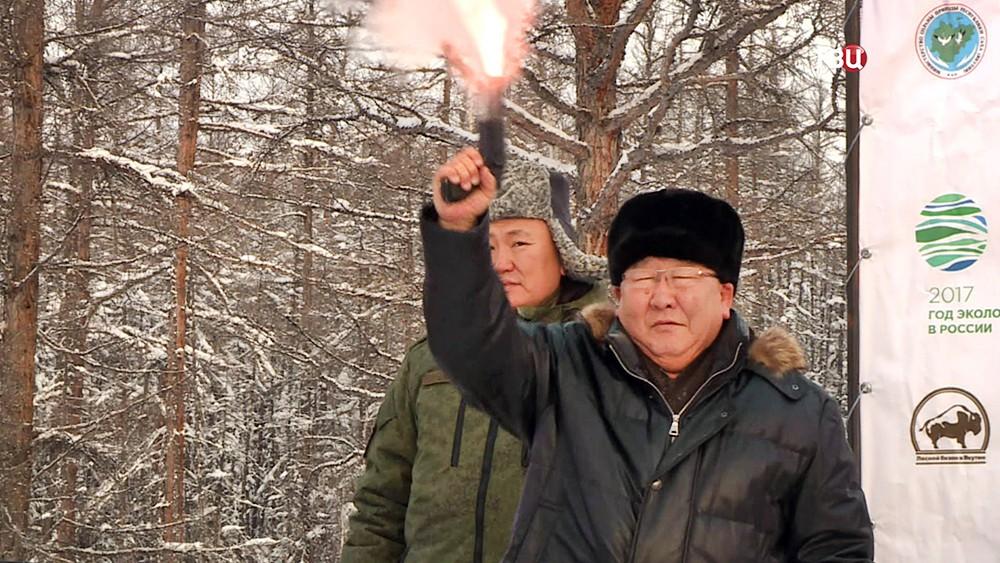 В Якутии выпустили на волю стадо бизонов