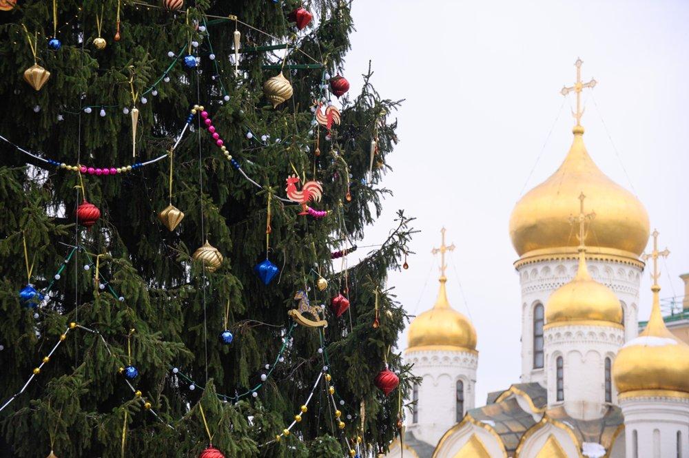 Курсанты Московского суворовского училища украсили главную елку Российской Федерации