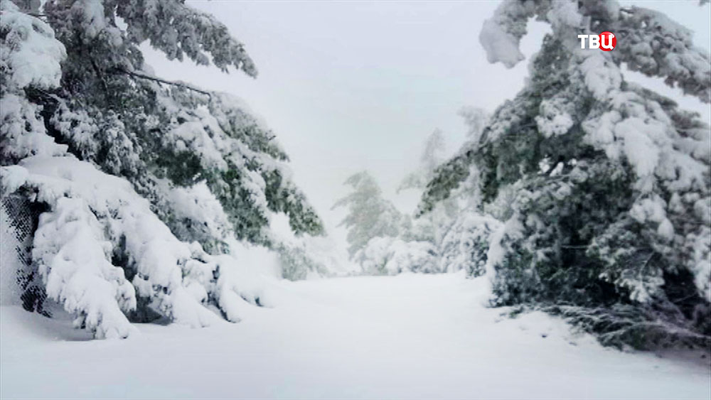 Снегопад в Европе