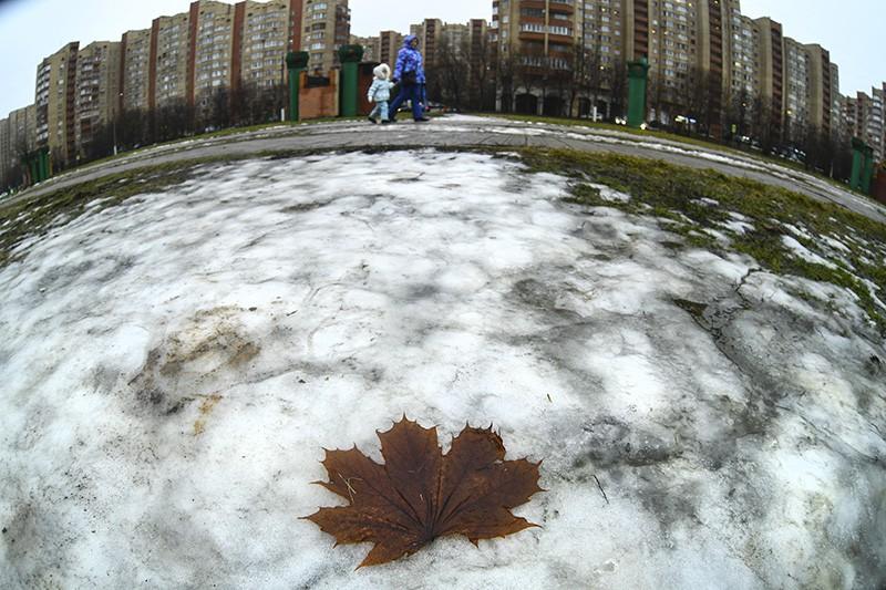 Теплая дождливая погода в Москве перед Новым годом