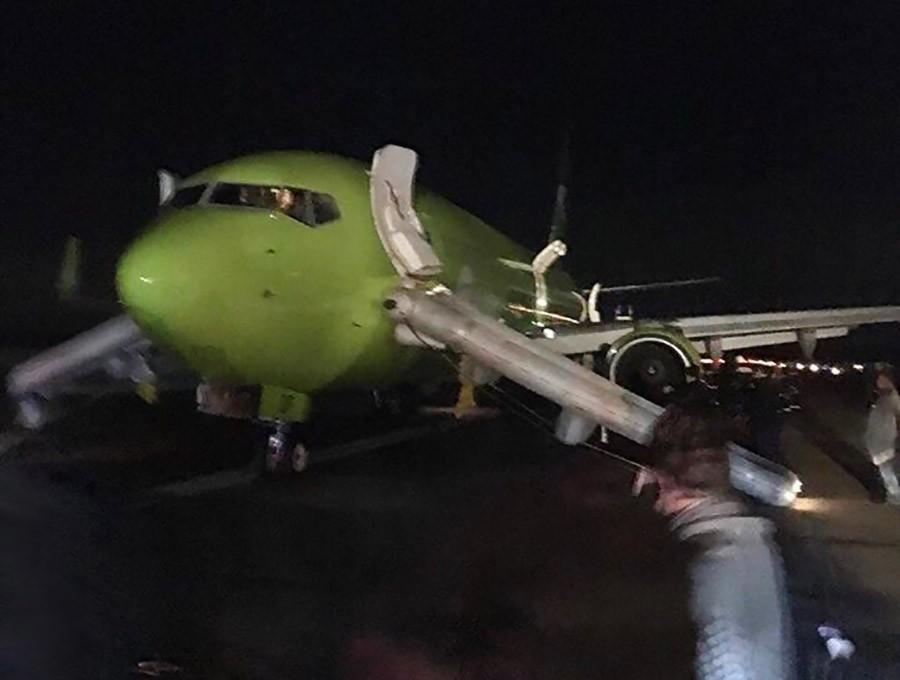 сучка самолет в египте новости причины сосет хуй одногрупнику
