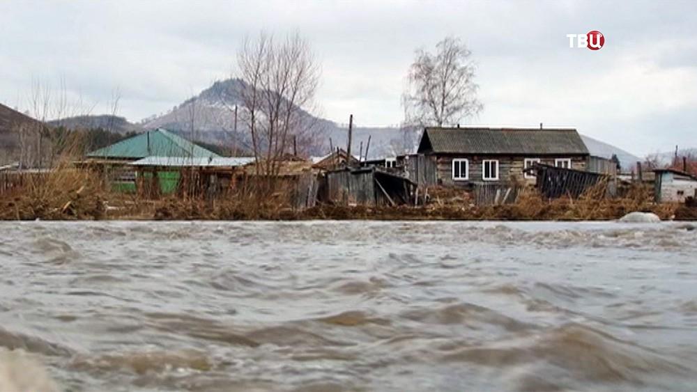 Паводок в Алтайском крае