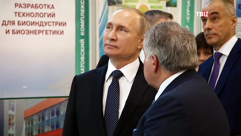 Разноеorg  Новости DLE шаблоны и пр
