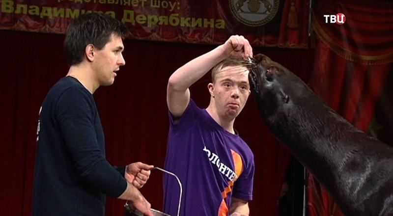 Открытая репетиция для детей в Цирке