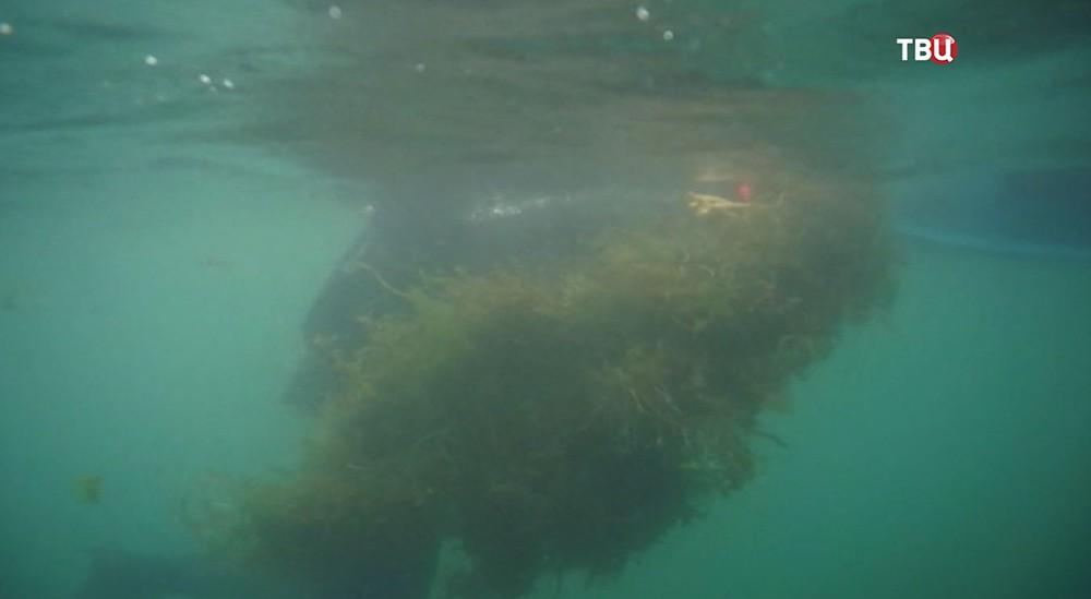 Чистка озера Байкал