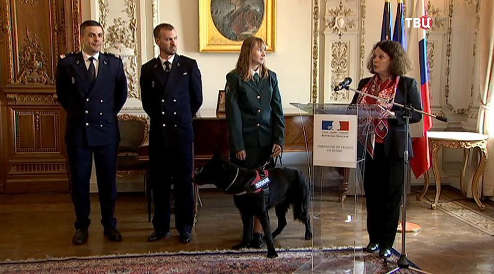 Матисс в резиденции французского посольства