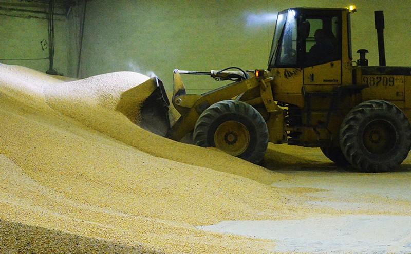 Погрузка кукурузы российского производства