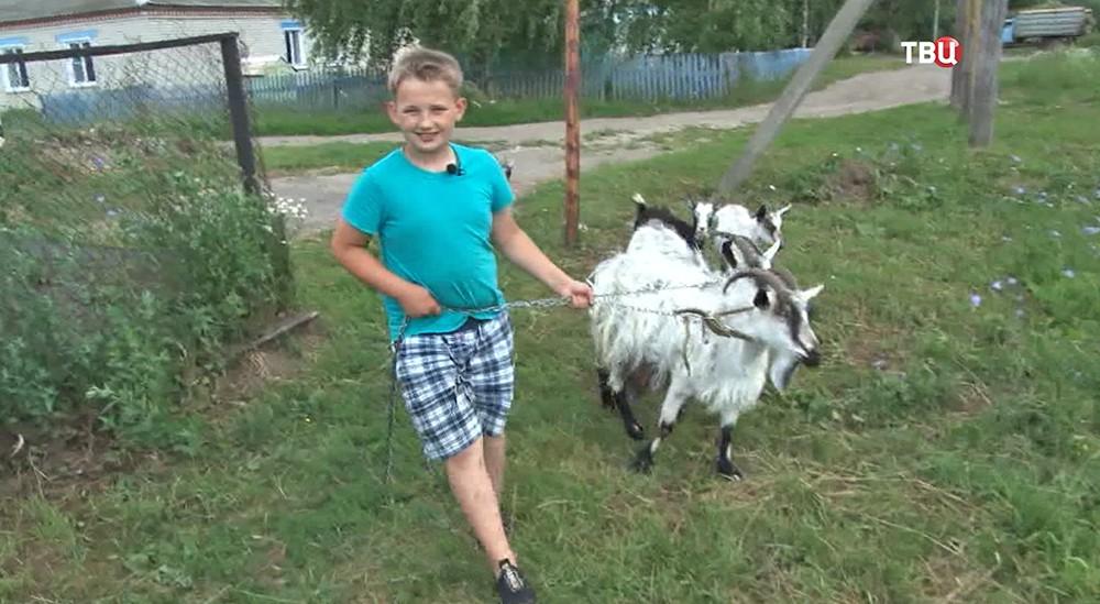10-летний фермер ухаживает за козами