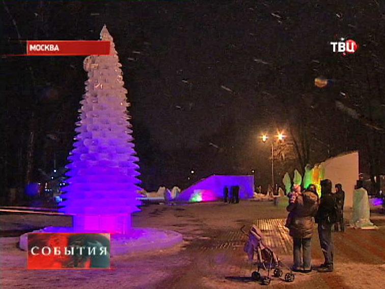Ледяная ель в Измайловском парке