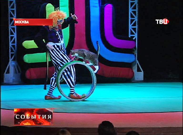 Фрагмент из представления