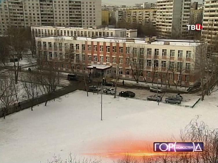 Здание 263 школы в Отрадном