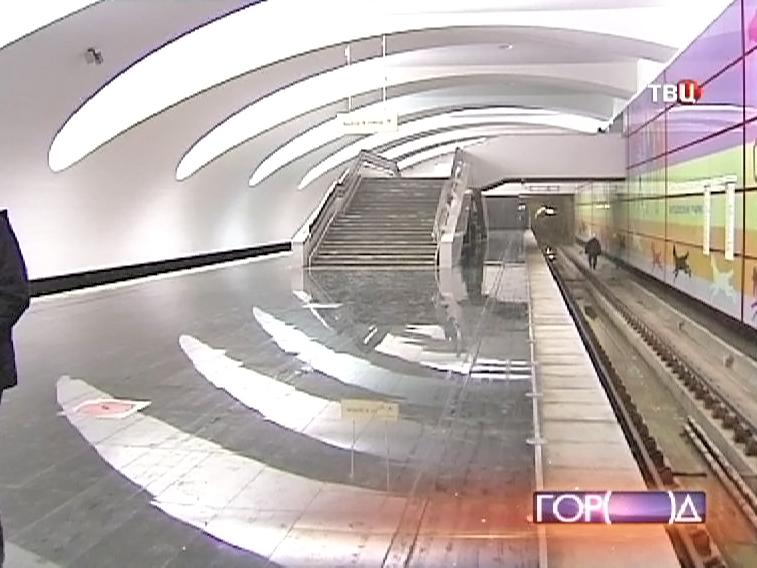 """Станция метро """"Битцевский парк"""""""