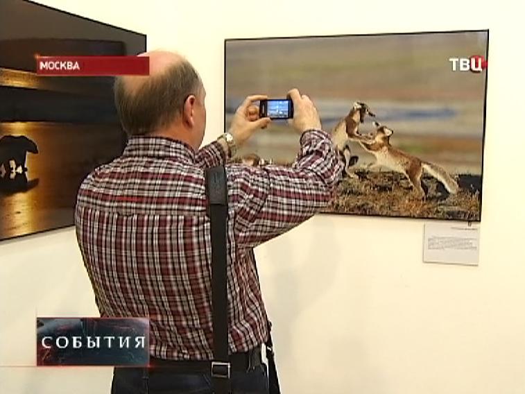 Посетители фотовыставки