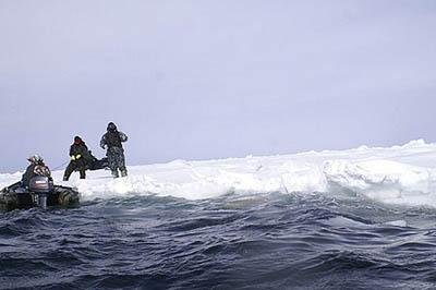 Дрейфующая льдина