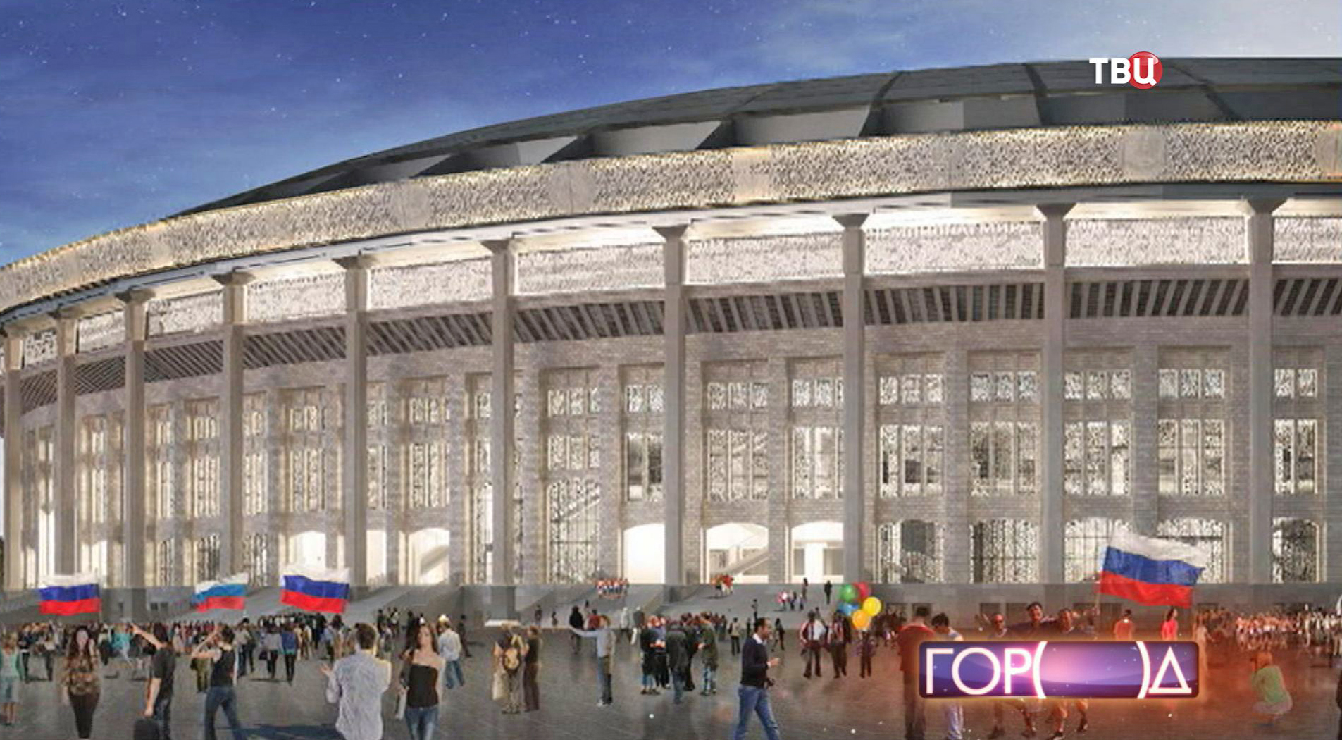 """Проект реконструкции стадиона """"Лужники"""""""