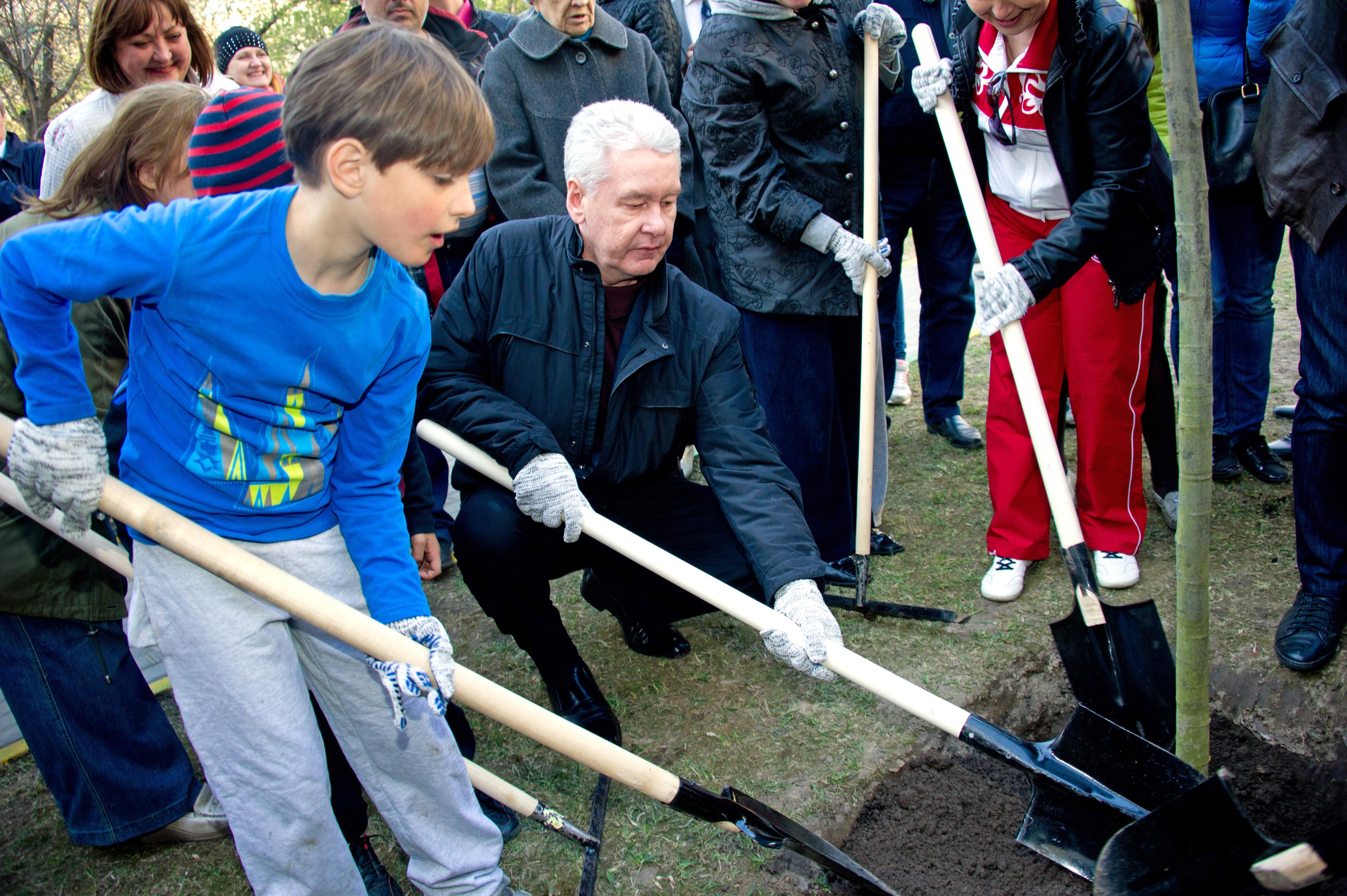 Сергей Собянин во время посадки дерева