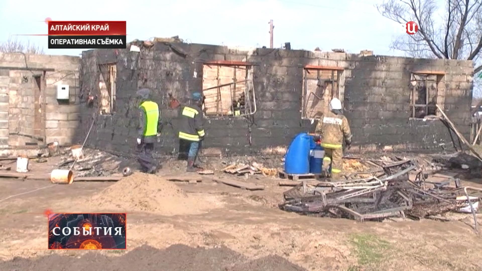 Пожар в Алтайском крае
