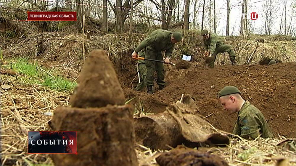Солдаты - поисковики проводят раскопки