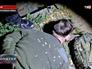 Задержание экстремистов в Крыму