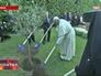 Папа Римский Франциск, Шимон Перес и Махмуд Аббас сажают оливковое дерево