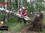 Спасатели МЧС устраняют последствия урагана на Сахалине