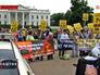 Митинг против войны в Ираке у здания Белого дома в США