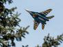 Истребитель ВВС Украины