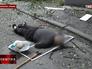 Последствия обстрела Нацгвардией Украины жилого сектора в Луганской области