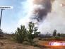 Лесной пожар в Тверской области