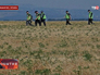Эксперты ОБСЕ около места падения boeing в Донецкой области