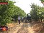 Подмосковные фермеры собирают урожай