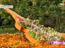 """Цветники в парке """"Кузьминки-Люблино"""""""