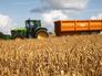 Сбор урожая пшеницы