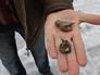 Житель Донецка показывает осколки разорвавшегося во время обстрела города снаряда
