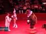 Цирковые медведи