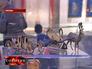 """Экспонаты в музее """"Бородинской панорамы"""""""