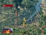 Пожарный ликвидирует возгорание в лесном массиве