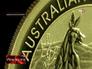 Самая большая монета в мире