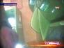 Кадр из съемки видеонаблюдения за банкоматом