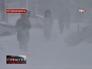 Метель и мороз в Ростовской области