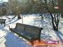 "Ботанический сад МГУ ""Аптекарский огород"""