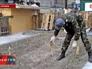 Грядки на площади Независимости в Киеве