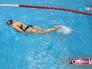 Плавчиха в бассейне