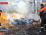 Сотрудники МЧС ликвидируют лесной пожар