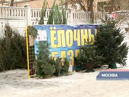 """""""Петровка, 38"""". Эфир от 30.12.2014, 04:50"""
