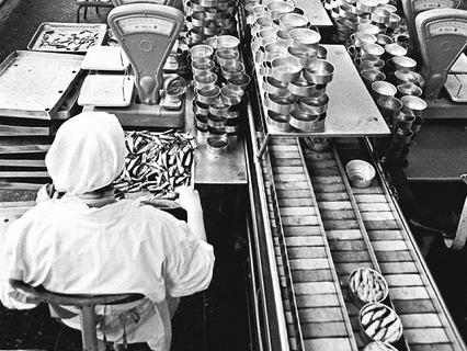 Производство рижских шпрот